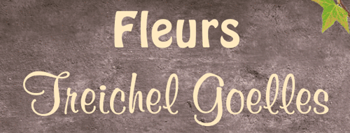 Logo Fleurs Treichel Goelles