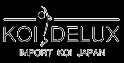 Koï Delux