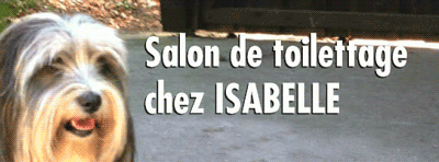 Salon de Toilettage chez Isabelle