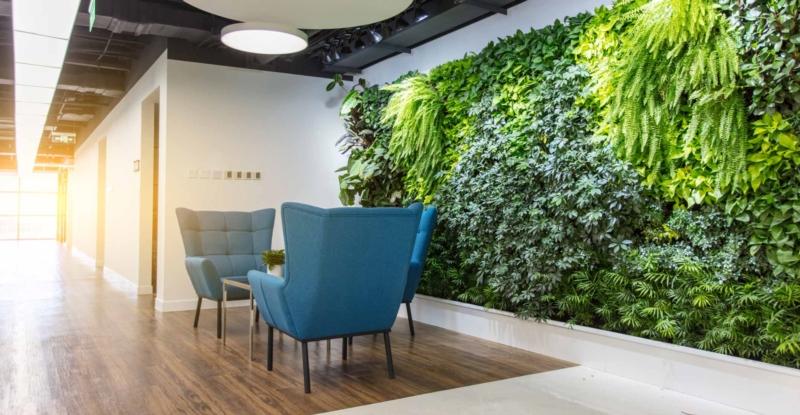 Végétaliser une entreprise : mettre ses salariés au vert