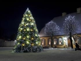 Illuminez votre jardin pour Noël !
