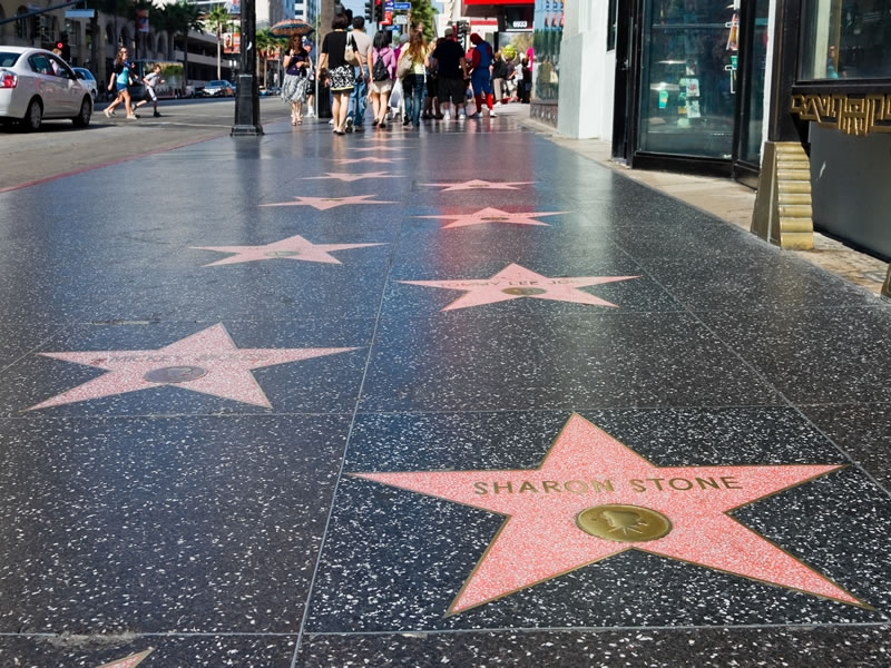 the stars and real estate