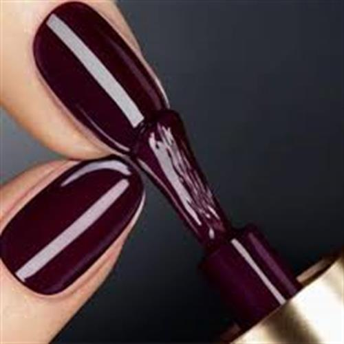 vernis permanent Pro Nails 35euro