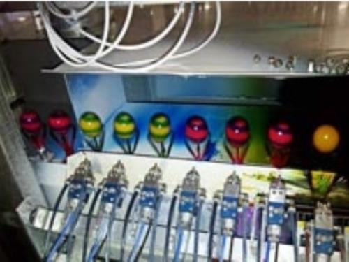 Coloration des oeufs