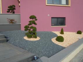 Vorgarten mit dekorativen Steinen und Bonsaï