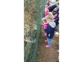 Parc animalier à Esch-sur-Alzette