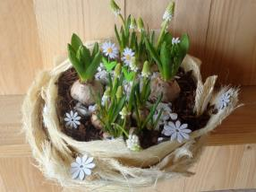 Blumenkurs - Frühjahrspflanzen in selbstgefertigten Schalen