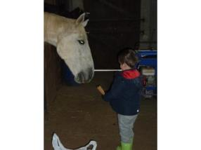 Rencontre avec les animaux de la ferme