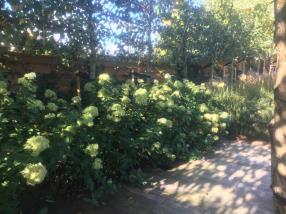 Aménagement jardin