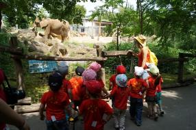Excursion au zoo d'Amnéville