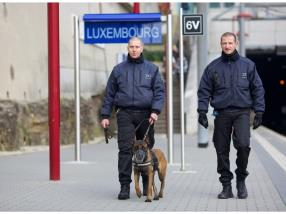 Surveillance statique par maître-chien